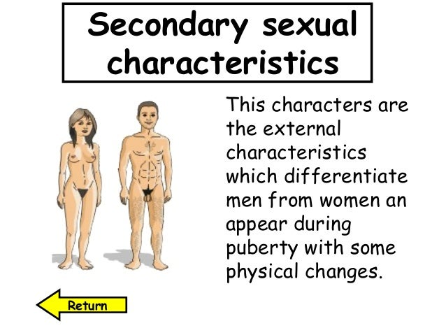 Female secondary sex characteristics #8