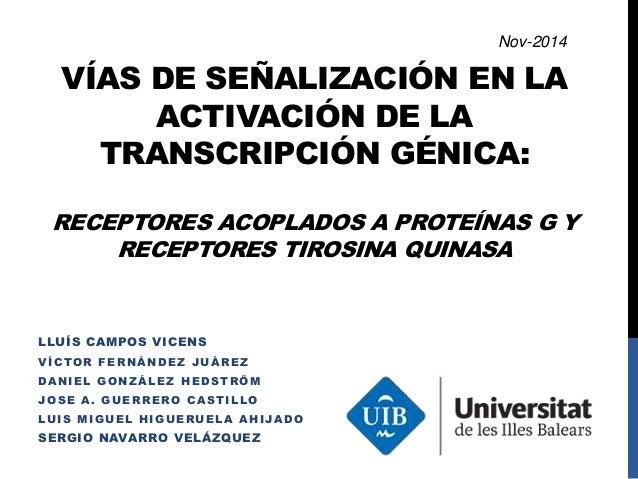 VÍAS DE SEÑALIZACIÓN EN LA  ACTIVACIÓN DE LA  TRANSCRIPCIÓN GÉNICA:  RECEPTORES ACOPLADOS A PROTEÍNAS G Y  RECEPTORES TIRO...