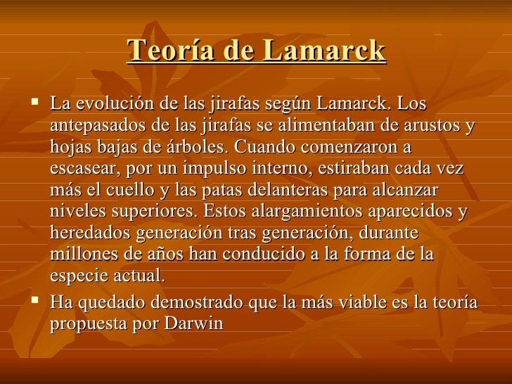 Teoría de Lamarck <ul><li>La evolución de las jirafas según Lamarck. Los antepasados de las jirafas se alimentaban de arus...