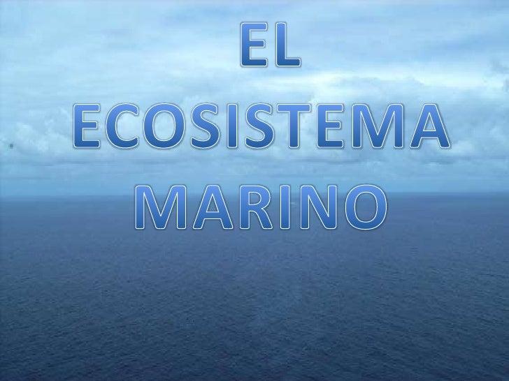 EL MAR• Los océanos cubren el 71 % de la superficie de  la Tierra• Se denomina océano a la parte de la superficie  terrest...