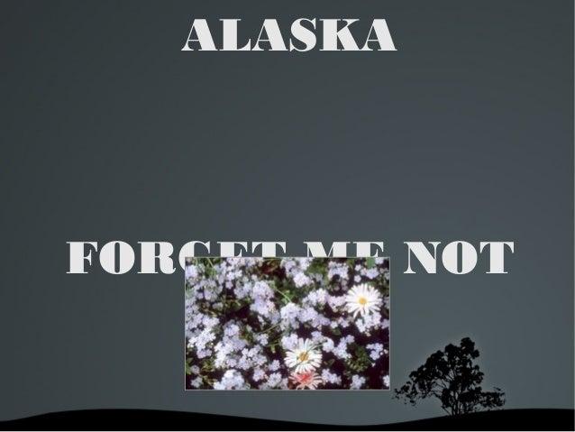 ALASKA  FORGET ME NOT