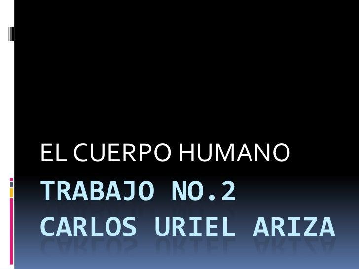 TRABAJO No.2Carlos urielariza<br />EL CUERPO HUMANO<br />