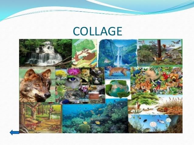 Biologia y geologia 3 eso santillana online dating 5