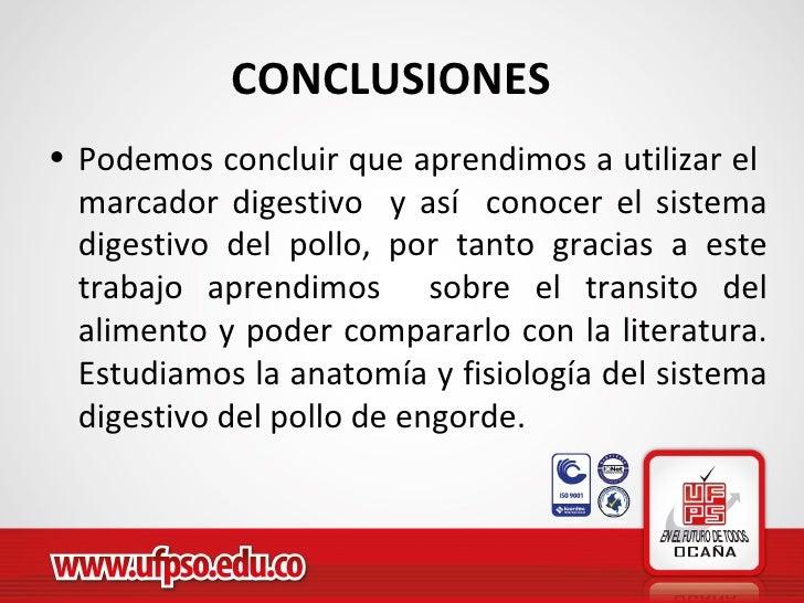 Contemporáneo La Anatomía Y La Fisiología De Pollo Ideas - Anatomía ...