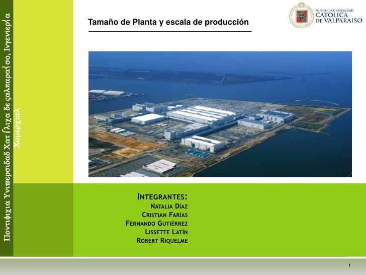 Tamaño de Planta y escala de producción<br /> Pontificia Universidad Católica de Valparaíso, Ingeniería Comercial<br />Int...