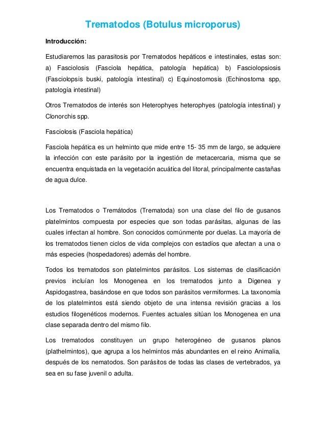 Trematodos (Botulus microporus) Introducción: Estudiaremos las parasitosis por Trematodos hepáticos e intestinales, estas ...