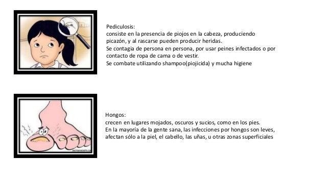 Latina amadora de veracruz - 1 1