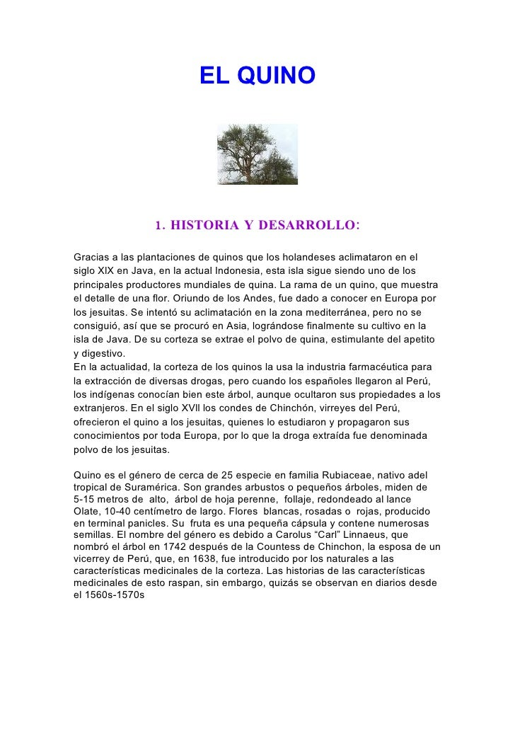 EL QUINO                      1. HISTORIA Y DESARROLLO:  Gracias a las plantaciones de quinos que los holandeses aclimatar...