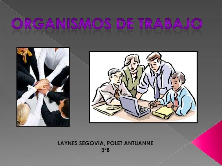 JOVENES A LA OBRA                                                                             Programa Nacional de Empleo ...