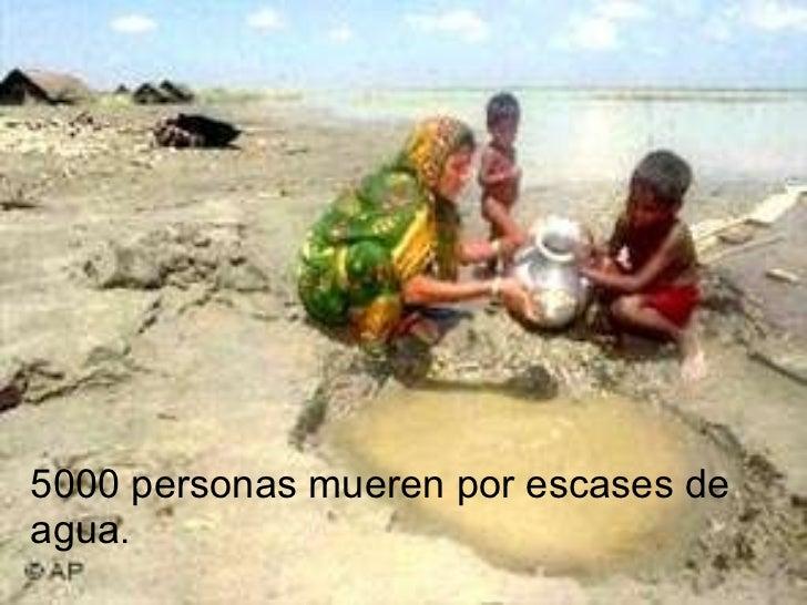 5000 personas mueren por escases de agua .