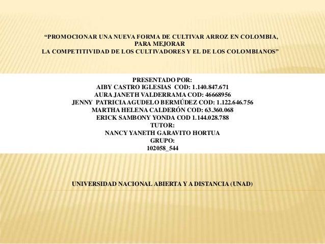 """""""PROMOCIONAR UNA NUEVA FORMA DE CULTIVAR ARROZ EN COLOMBIA, PARA MEJORAR LA COMPETITIVIDAD DE LOS CULTIVADORES Y EL DE LOS..."""