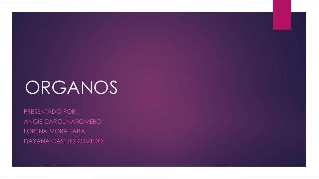 ORGANOS PRESENTADO POR: ANGIE CAROLINAROMERO LORENA MORA JARA DAYANA CASTRO ROMERO