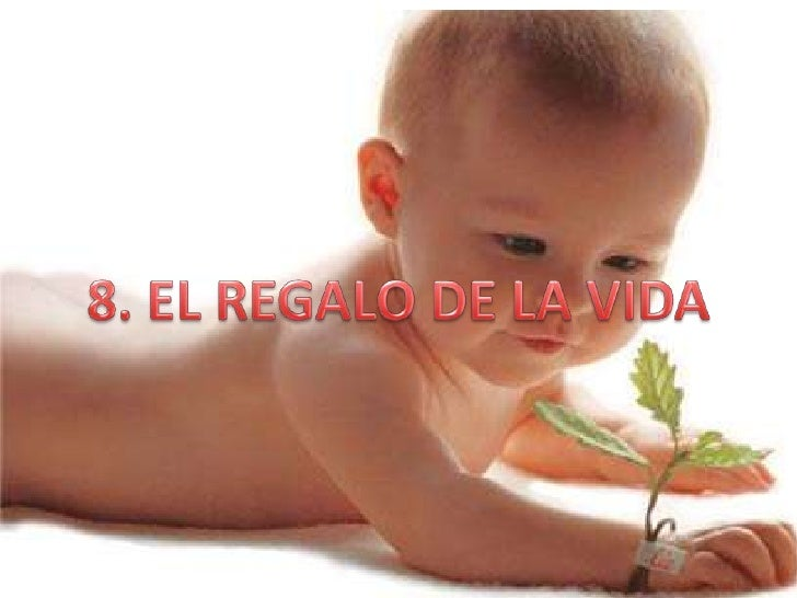8. EL REGALO DE LA VIDA<br />