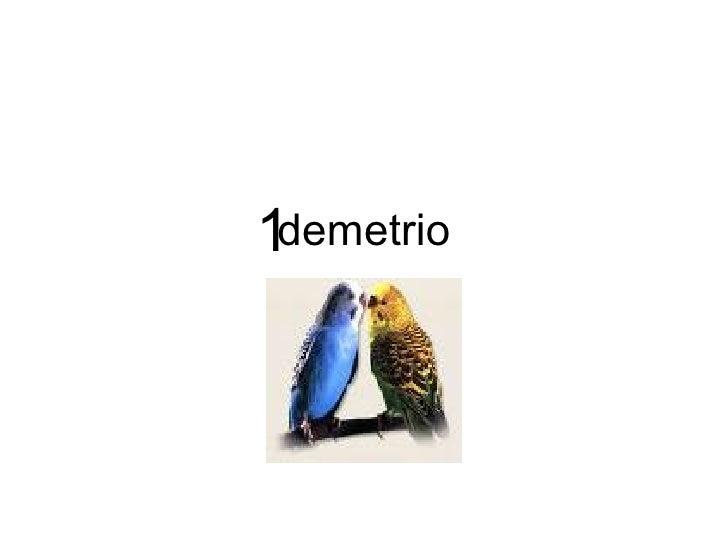 demetrio 1