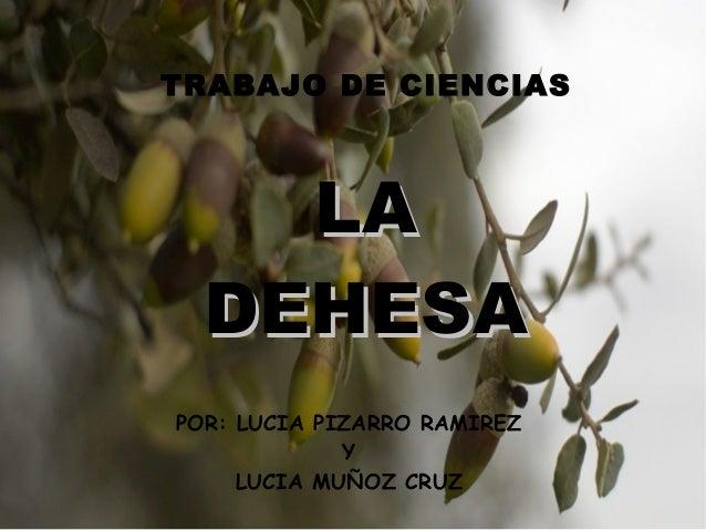TRABAJO DE CIENCIAS POR: LUCIA PIZARRO RAMIREZ Y LUCIA MUÑOZ CRUZ LALA DEHESADEHESA