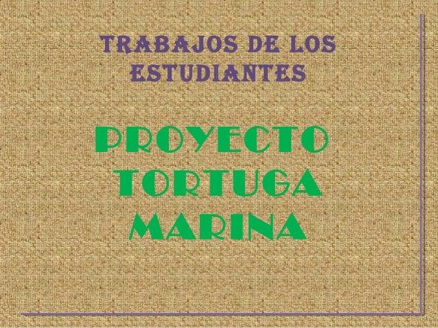 TRABAJOS DE LOS  ESTUDIANTESPROYECTO TORTUGA  MARINA