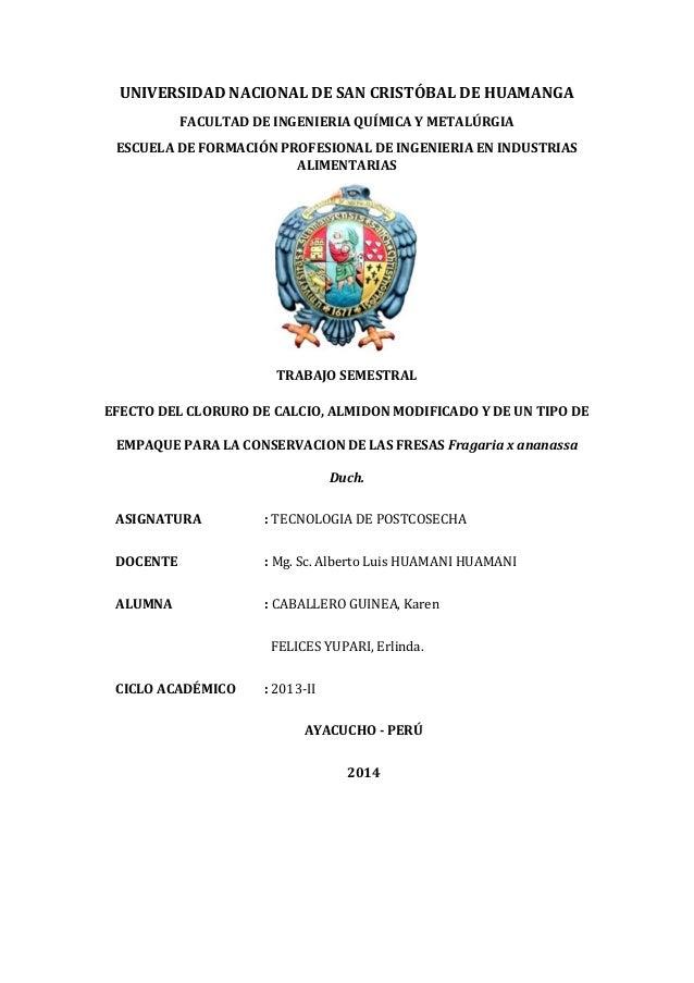 UNIVERSIDAD NACIONAL DE SAN CRISTÓBAL DE HUAMANGA FACULTAD DE INGENIERIA QUÍMICA Y METALÚRGIA ESCUELA DE FORMACIÓN PROFESI...