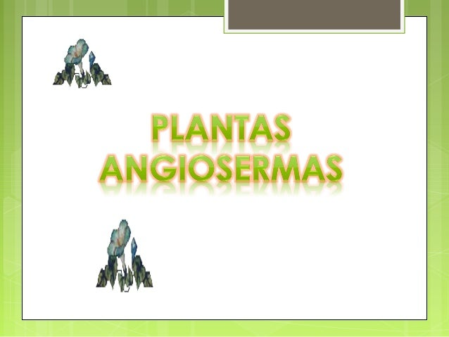 un género con varias especies de plantas rastreras Su nombre deri