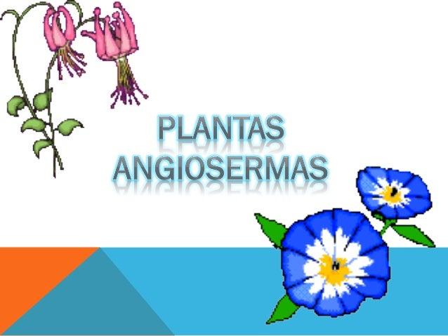 FRESAFragaria, llamado comúnmente fresera, es un género con varias   especies de plantas rastreras. Su nombre deriva de la...