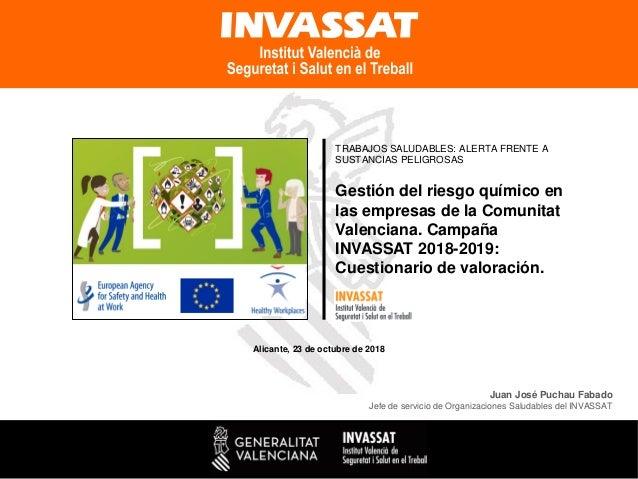 Gestión del riesgo químico en las empresas de la Comunitat Valenciana. Campaña INVASSAT 2018-2019: Cuestionario de valorac...