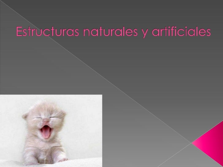    Introducción   Sistema Óseo   Armazones y hormigones   Vigas   Tirantes o tensores   Columna   Fabricación de es...