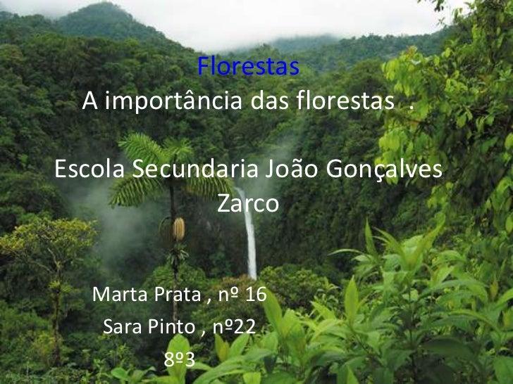 FlorestasA importância das florestas  .Escola Secundaria João Gonçalves Zarco<br />Marta Prata , nº 16<br />Sara Pinto , n...