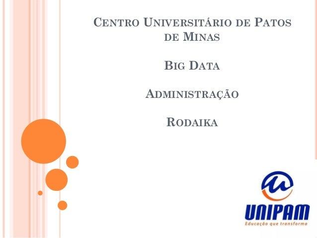CENTRO UNIVERSITÁRIO DE PATOS DE MINAS BIG DATA ADMINISTRAÇÃO RODAIKA