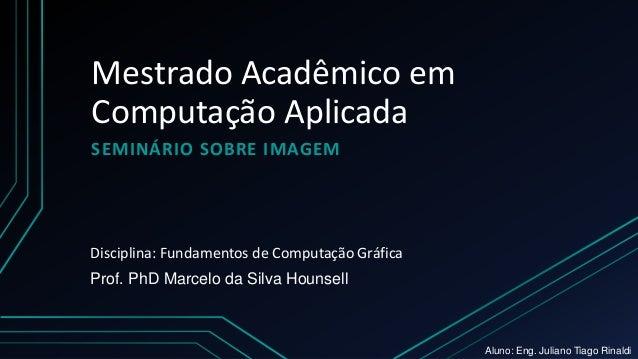 Mestrado Acadêmico em Computação Aplicada SEMINÁRIO SOBRE IMAGEM Prof. PhD Marcelo da Silva Hounsell Disciplina: Fundament...