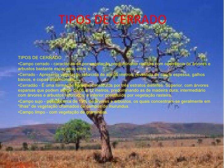 TIPOS DE CERRADO <ul><li>TIPOS DE CERRADO:  </li></ul><ul><li>Campo cerrado - caracteriza-se por vegetação predominante ra...