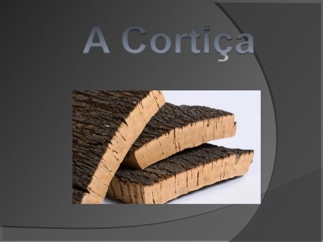 Casca de sobreiro Tecido vegetal 100% natural A cortiça é retirada de 9 em 9 anos