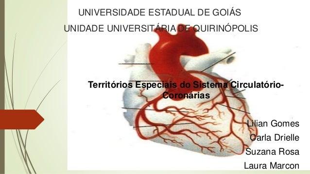 Territórios Especiais do Sistema Circulatório- Coronárias Lilian Gomes Carla Drielle Suzana Rosa Laura Marcon UNIVERSIDADE...