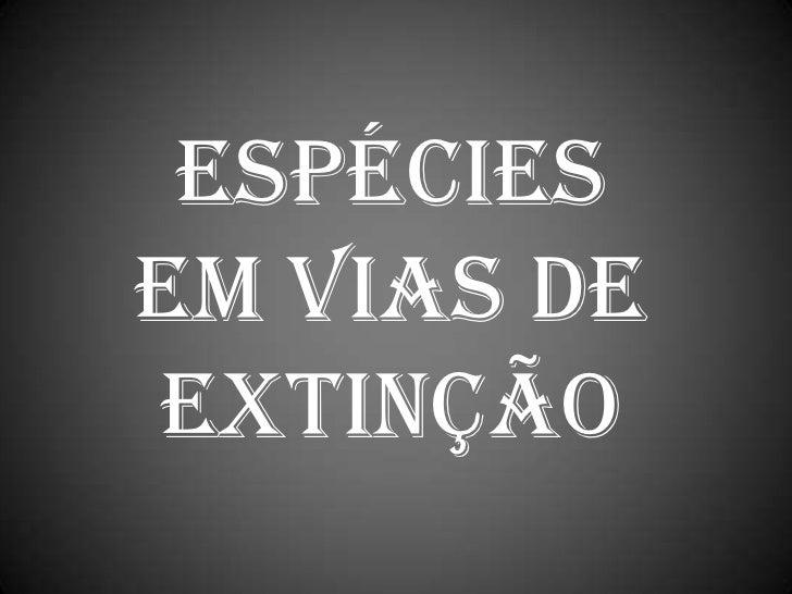 Espécies em vias de extinção