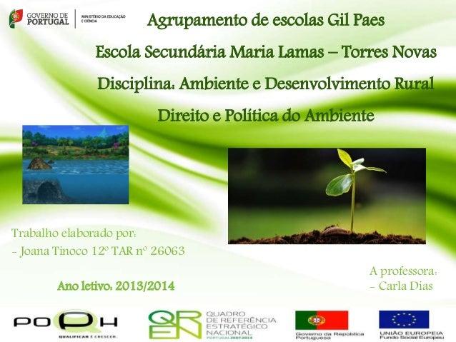 Agrupamento de escolas Gil Paes  Escola Secundária Maria Lamas – Torres Novas  Disciplina: Ambiente e Desenvolvimento Rura...