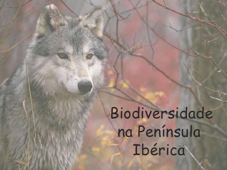 Biodiversidade<br />na Península Ibérica<br />