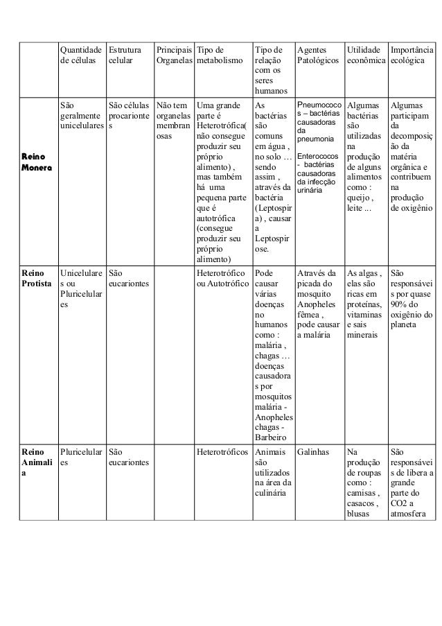 Quantidade de células Estrutura celular Principais Organelas Tipo de metabolismo Tipo de relação com os seres humanos Agen...