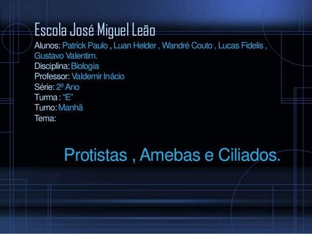 Escola José Miguel Leão Alunos: Patrick Paulo , Luan Helder , Wandré Couto , Lucas Fidelis , Gustavo Valentim. Disciplina:...