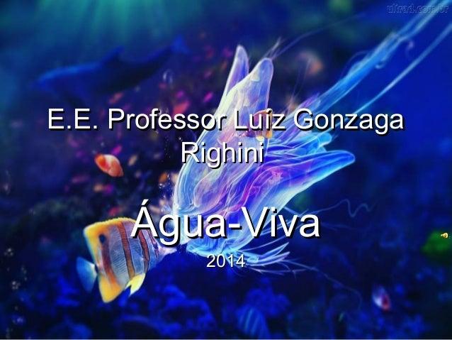 E.E. Professor Luíz GonzagaE.E. Professor Luíz Gonzaga RighiniRighini Água-VivaÁgua-Viva 20142014