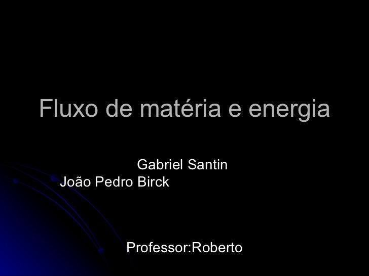 Fluxo de matéria e energia Gabriel Santin  João Pedro Birck  Professor:Roberto