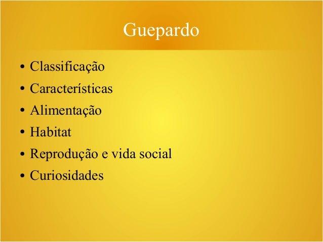 Guepardo ● Classificação ● Características ● Alimentação ● Habitat ● Reprodução e vida social ● Curiosidades