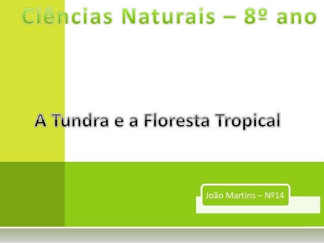 João Martins – Nº14