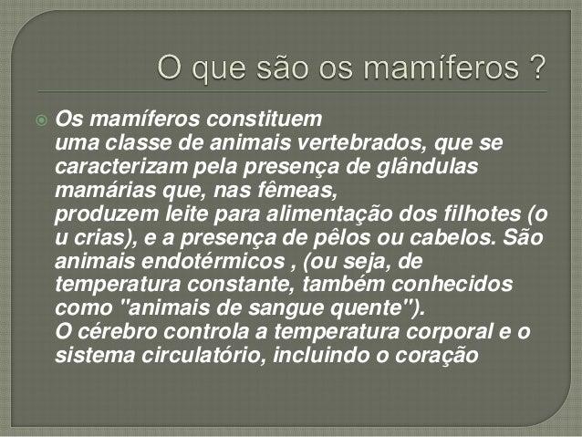  Os mamíferos constituem uma classe de animais vertebrados, que se caracterizam pela presença de glândulas mamárias que, ...