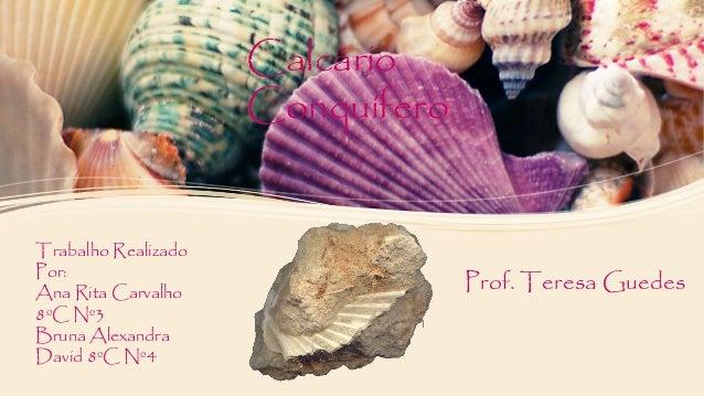 Calcário Conquífero Trabalho Realizado Por: Ana Rita Carvalho 8ºC Nº3 Bruna Alexandra David 8ºC Nº4 Prof. Teresa Guedes