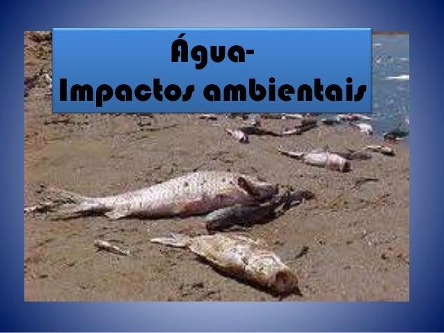 Água- Impactos ambientais