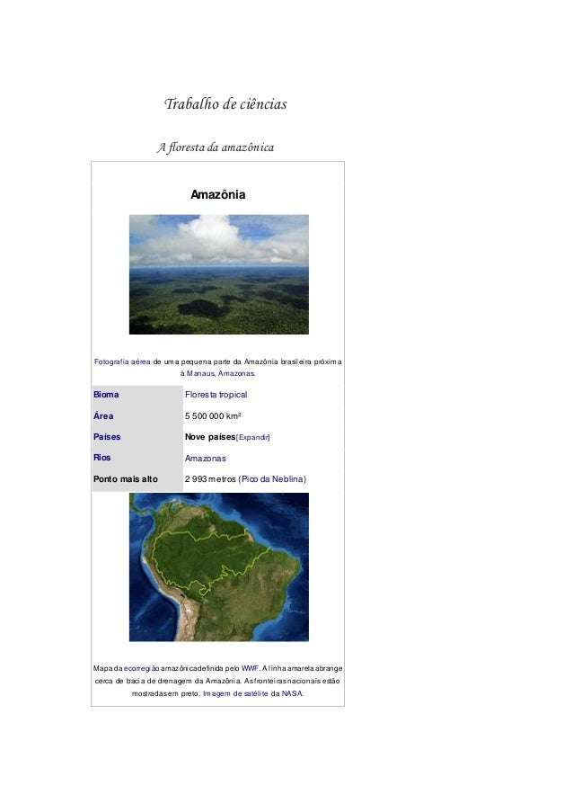 Trabalho de ciências A floresta da amazônica Amazônia Fotografia aérea de uma pequena parte da Amazônia brasileira próxima...