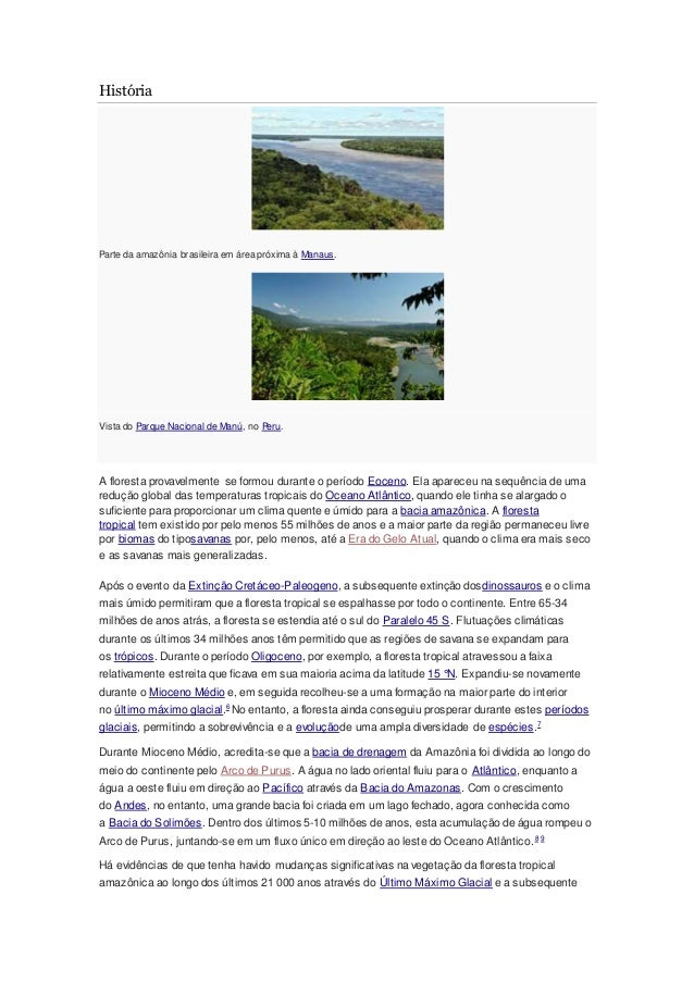 História Parte da amazônia brasileira em área próxima à Manaus. Vista do Parque Nacional de Manú, no Peru. A floresta prov...