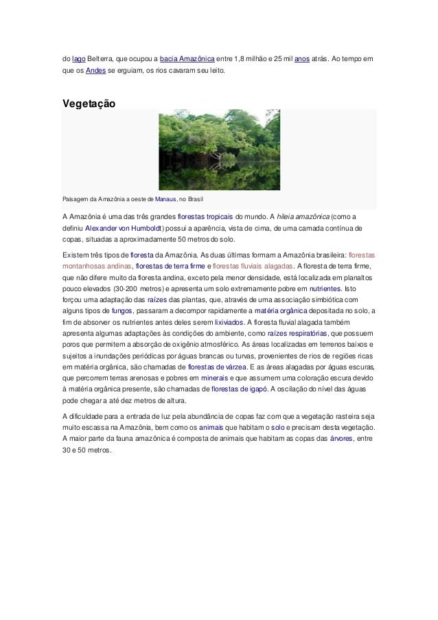do lago Belterra, que ocupou a bacia Amazônica entre 1,8 milhão e 25 mil anos atrás. Ao tempo em que os Andes se erguiam, ...
