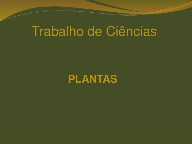 Trabalho de Ciências PLANTAS