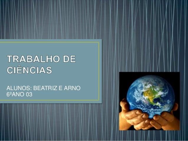 ALUNOS: BEATRIZ E ARNO6ºANO 03