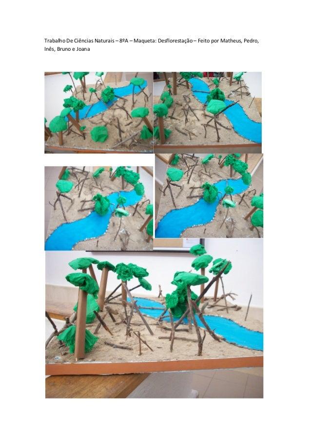 Trabalho De Ciências Naturais – 8ºA – Maqueta: Desflorestação – Feito por Matheus, Pedro, Inês, Bruno e Joana