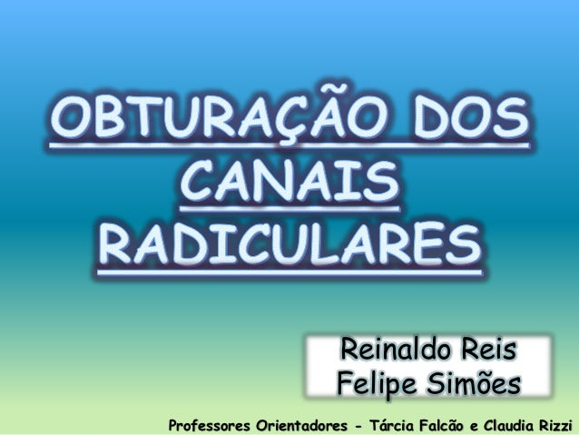 Professores Orientadores - Tárcia Falcão e Claudia Rizzi Reinaldo Reis Felipe Simões